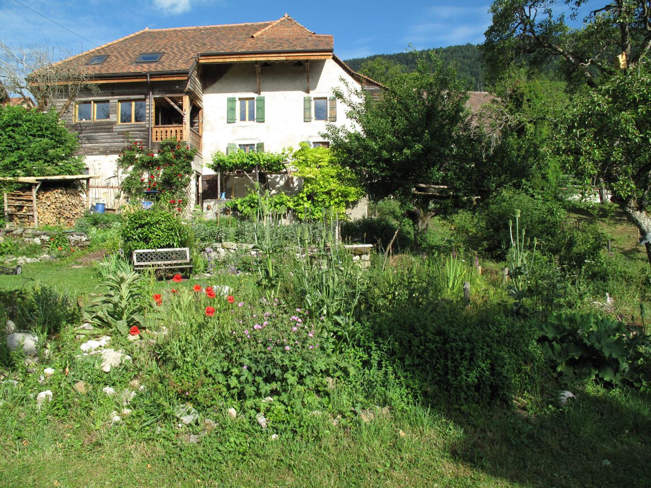 Le jardin naturel la maison nature for Jardin naturel